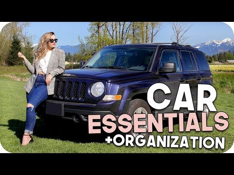 Car Essentials + Organization Tips!